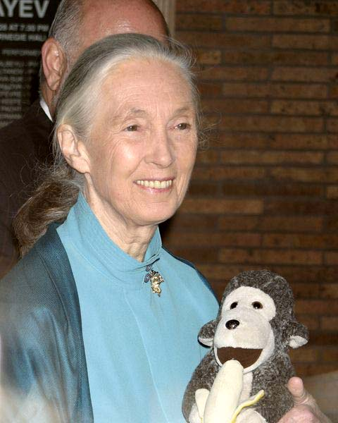 Dr. Jane Goodall at Glamour Magazine Honors the 2008 Women of the Year at Carnegie Hall in New York City, NY, USA
