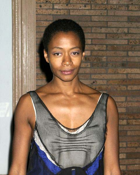 Kara Walker at Glamour Magazine Honors the 2008 Women of the Year at Carnegie Hall in New York City, NY, USA
