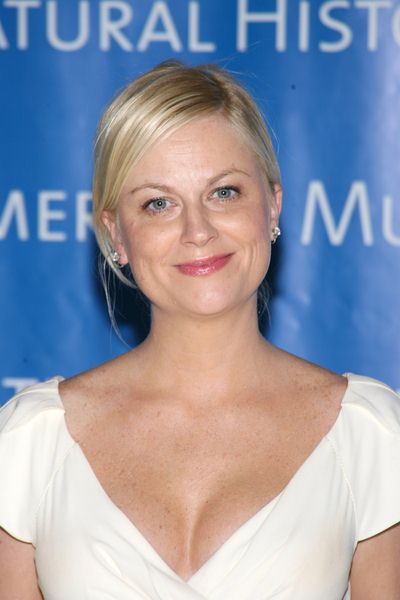 Amy Poehler at The Museum Gala 2008 at The Museum of Natural History, Central Park West at 79th Street, New York City, NY, USA